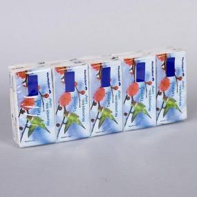 Confezione da 10 Pocket, ognuno da 10 fazzoletti a 3 veli in morbida o...