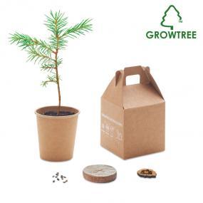 Restituite un albero alla terra. Incorpora semi di pino...